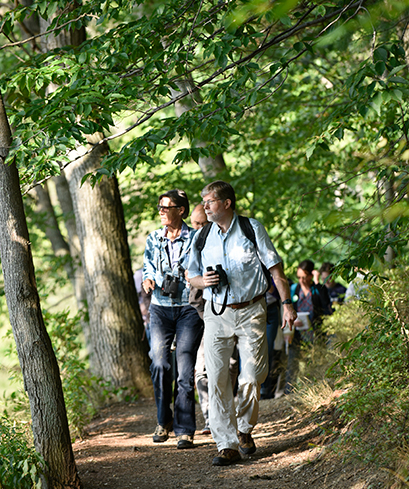 A photo of Nick Rodenhouse, emeritus professor of biological sciences, leading bird watchers on a path near Lake Waban.