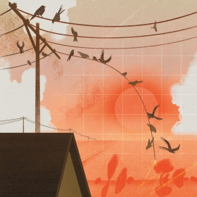 An illustration depicts birds falling from electrical wires against an orange sky.