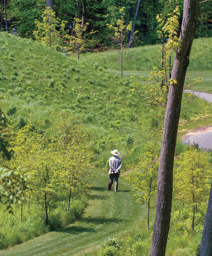 2007: Peter Fergusson, Feldberg Professor of Art, walking into the restored Alumnae Valley around the time of his retirement