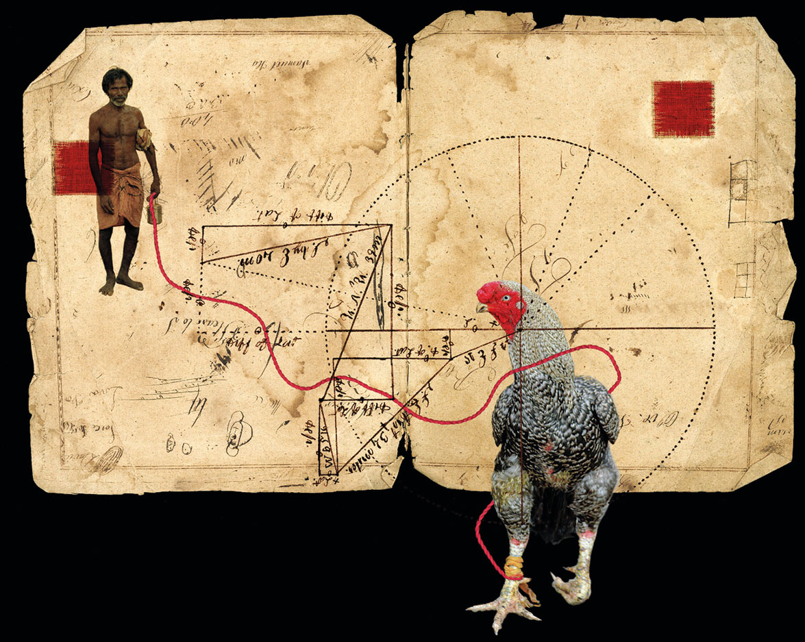 Gamecock, a photo featuring an antique piece of paper with an elaborate geometry illustration (with calligraphied notations), onto which a dark-skinned man in native garb, and a rooster, have been superimposed.