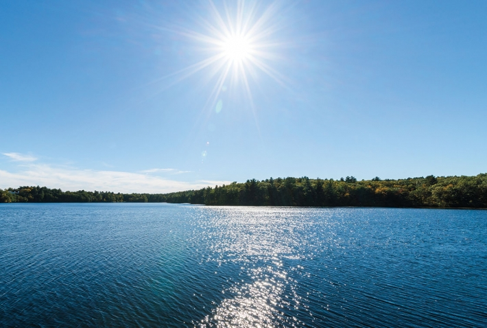 Lake Waban in summer
