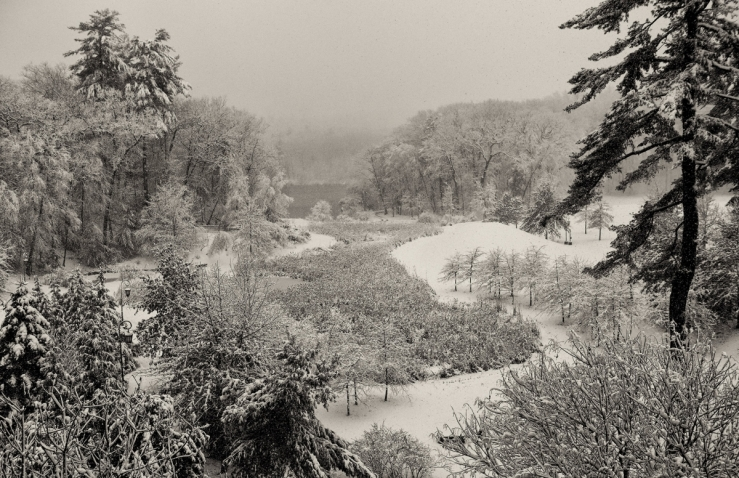 Alumnae Valley covered in snow
