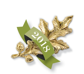 A photo of the gold oak-leaf pin presented to Achievement Award Winners, wrapped in a 2018 banner.