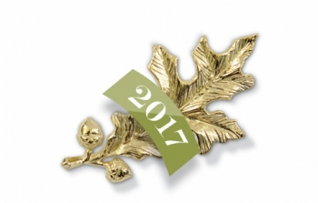 The gold oak leaf pin presented to Alumnae Achievement Award winners