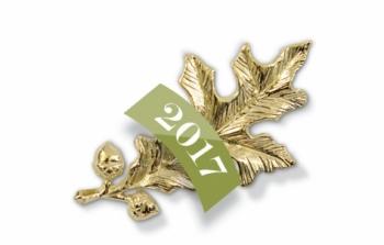 The gold oak leaf pin presented to Alumnae Achievement Award winners