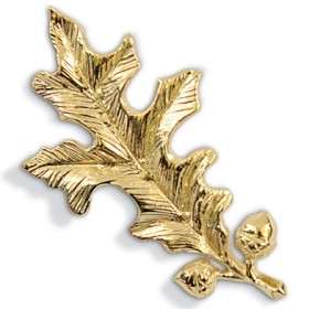 The gold oak leaf pin given to recipients of the Alumnae Achievement Award
