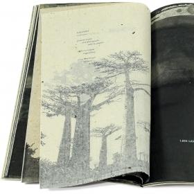 The artist's book Kalumet, opened