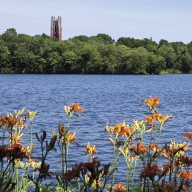 A photo of Lake Waban with tiger lilies in the foreground and Galen Stone Tower in the background.