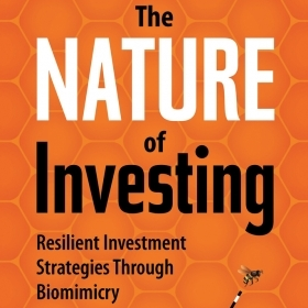 A Beeline to Better Investing