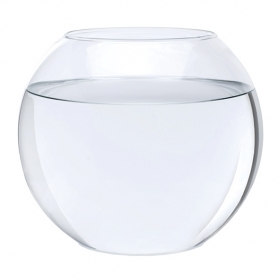 Photograph of empty fish bowl